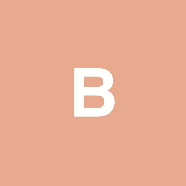 bonvier-sg.com